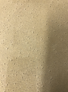 Bubbles On Concrete Finish